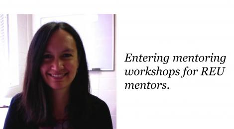 Entering mentoring workshops for REU mentors