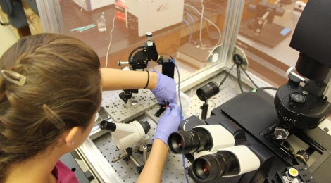 UGA symposium highlights student research in nanotechnology and biomedicine